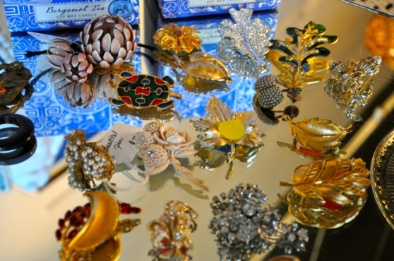Beautiful Brooches and Pins